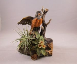 Air Plant on Robin Figurine