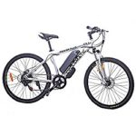 Electric Bike EBike Morotizwd Bike